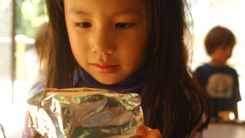 Dunwoody Nature Center's young campers study solar power by making s'mores